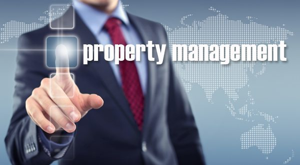 Commercial Property Executive : Commercial property management gets professionalised in sa