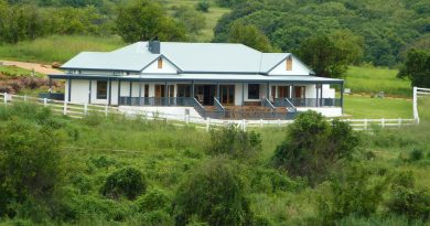 Tzaneen property market offers many opportunities