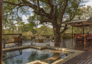 Call of the African bush attracts city dwellers and overseas buyers to secure wildlife estates